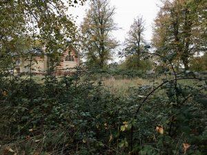 Overgrown Grounds
